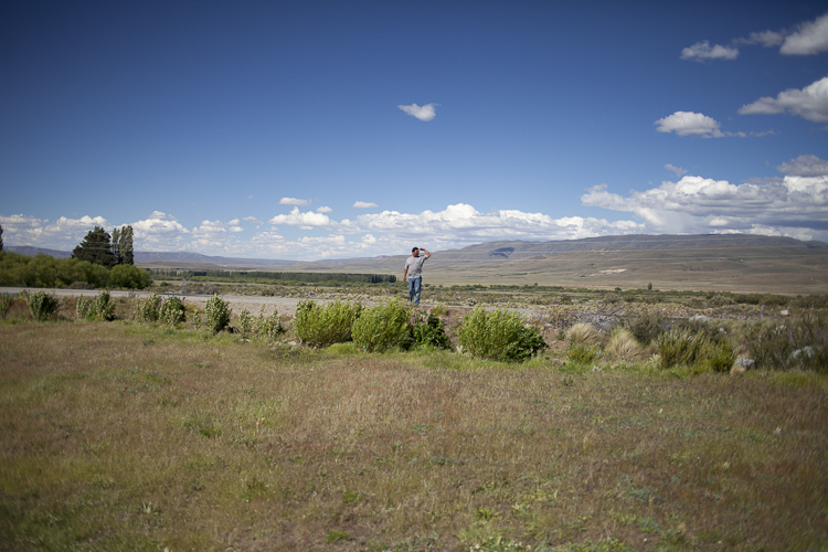 Atilio Curiñanco searching for cattle grazing around the reclai