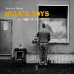 """Copertina del libro """"Hulk's Toys"""""""